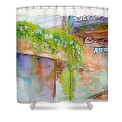Bull Street Savannah Ga Shower Curtain