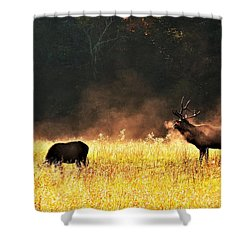 Bull With His Girl Shower Curtain