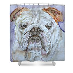 Shower Curtain featuring the painting Bulldog - Watercolor Portrait.5 by Fabrizio Cassetta