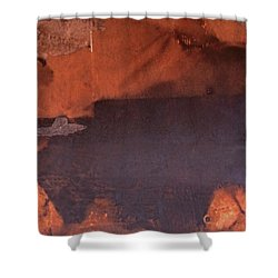 Bullfight Shower Curtain by Laurie Stewart