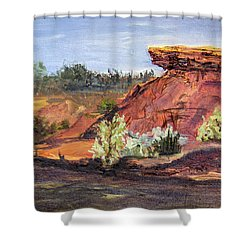 Bullock Reservoir Shower Curtain