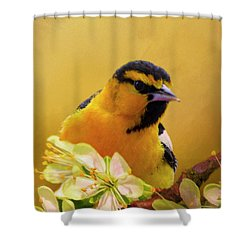Bullocks Oriel Shower Curtain