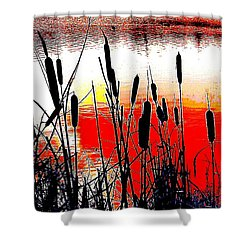 Bullrushes Against The Sunset Shower Curtain