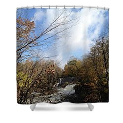 Bulls Bridge Shower Curtain