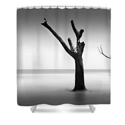 Bulls Island Vii Shower Curtain