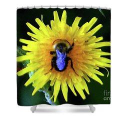 Bullseye Bumblebee Dandelion Shower Curtain