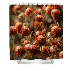 Bumble Bee Heaven Shower Curtain by Sherman Perry