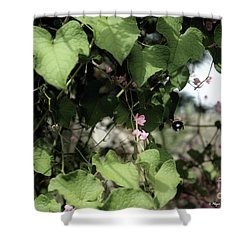 Shower Curtain featuring the photograph Bumble Bum by Megan Dirsa-DuBois