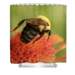 Shower Curtain featuring the photograph Bumblebee by Chris Berry