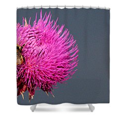 Shower Curtain featuring the photograph Bumblebee On Pompom by Silke Brubaker