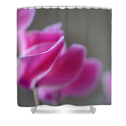 Bumping Into Love Shower Curtain