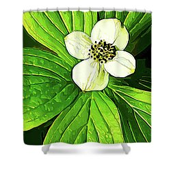 Bunchberry Blossom Shower Curtain