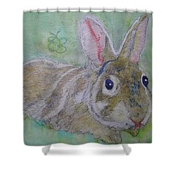Shower Curtain featuring the drawing bunny named Rocket by AJ Brown