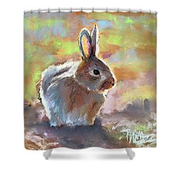Bunny Shower Curtain by Pattie Wall
