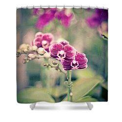 Shower Curtain featuring the photograph Burgundy Orchids by Ana V Ramirez