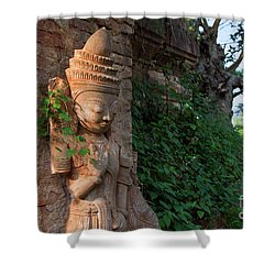 Burma_d195 Shower Curtain by Craig Lovell