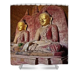Burma_d2104 Shower Curtain by Craig Lovell