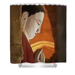 Burma_d2287 Shower Curtain by Craig Lovell