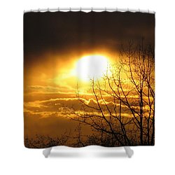 Burnaby Mountain Shower Curtain