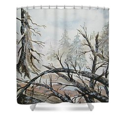 Shower Curtain featuring the painting Burned Forest In The Snow by Ellen Levinson