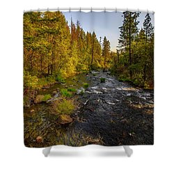 Burney Falls Hdr Shower Curtain