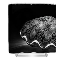 Burning Core, Dead Shell Shower Curtain