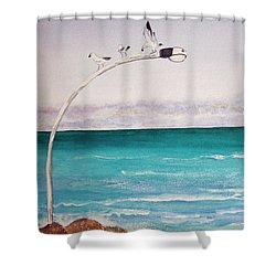 Burns Beach Shower Curtain
