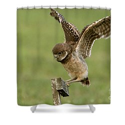 Burrowing Owl - Learning To Fly Shower Curtain
