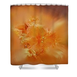 Burst Of Gold Shower Curtain