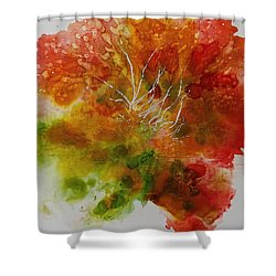 Burst Of Nature Shower Curtain by Carolyn Rosenberger