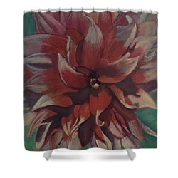 Burst Of Petals  Shower Curtain