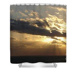 Burst Shower Curtain by Priscilla Richardson