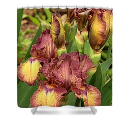 Shower Curtain featuring the photograph Bursting In Beauty by Sheila Brown