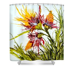 Bursting Shower Curtain