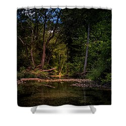 Busiek State Forest Shower Curtain