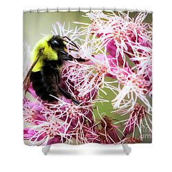 Shower Curtain featuring the photograph Busy As A Bumblebee by Ricky L Jones