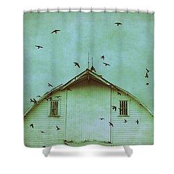 Busy Barn Shower Curtain by Julie Hamilton