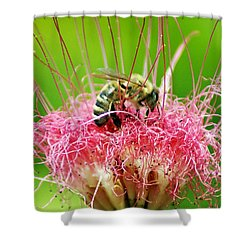 Busy Bee Shower Curtain by Holly Kempe