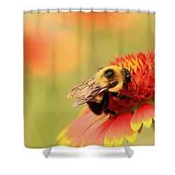 Shower Curtain featuring the photograph Busy Bumblebee by Chris Berry