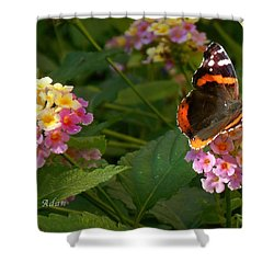 Shower Curtain featuring the photograph Busy Butterfly Side 1 by Felipe Adan Lerma