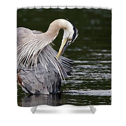 Busy Great Blue Heron Shower Curtain