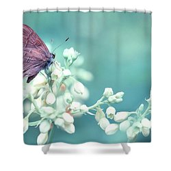 Shower Curtain featuring the photograph Buterfly Dreamin' by Mark Fuller