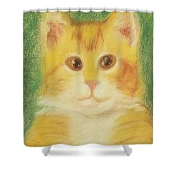 Shower Curtain featuring the drawing Buttercup by Denise Fulmer