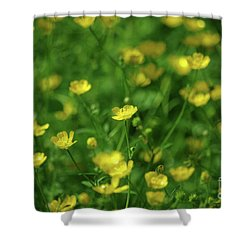Buttercup Field- Butler Creek Trail- Gresham- Oregon Shower Curtain
