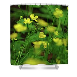 Buttercup Grouping- Vertical- Butler Creek Trail Shower Curtain