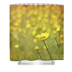 Shower Curtain featuring the photograph Buttercups by Lyn Randle
