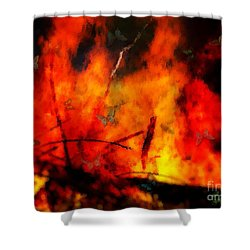 Butterflies And Flame Shower Curtain