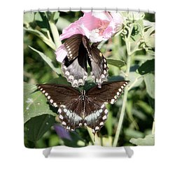 Butterflies Are Free 3 Shower Curtain