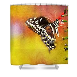 Butterflies Are Self Propelled Flowers Shower Curtain