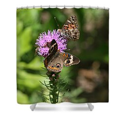 Shower Curtain featuring the photograph Butterflies And Purple Flower by Cathy Harper